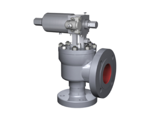 Interior_Consolidated Pilot-Operated Safety Relief Valve