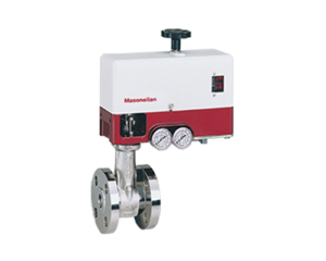 Interior_Masonelian Control Valves