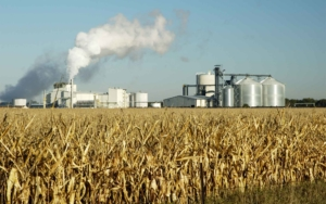 Ethanol-producing-farm-land